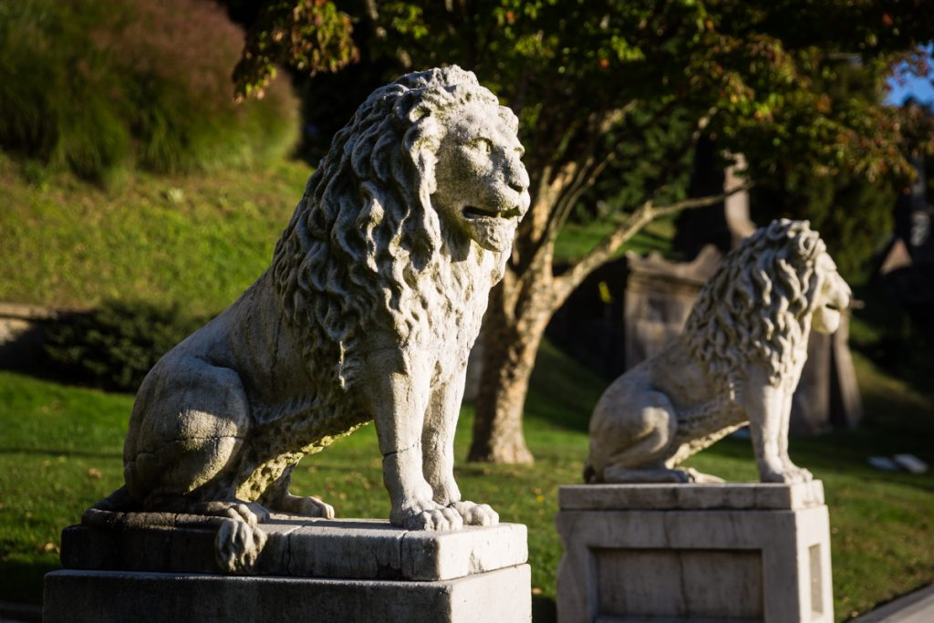 Lion statues outside the Niblo Museum